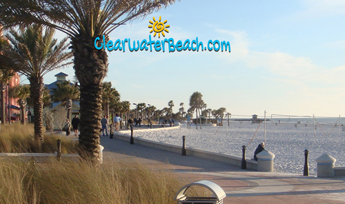 ClearwaterBeach.com web banner